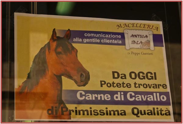 Ad for horse meat in Sicily, copyright Jann Huizenga