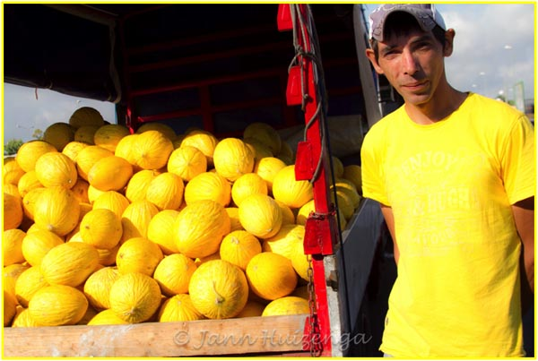 Sicilian Veggie Vender with Yellow Melons, copyright Jann Huizenga