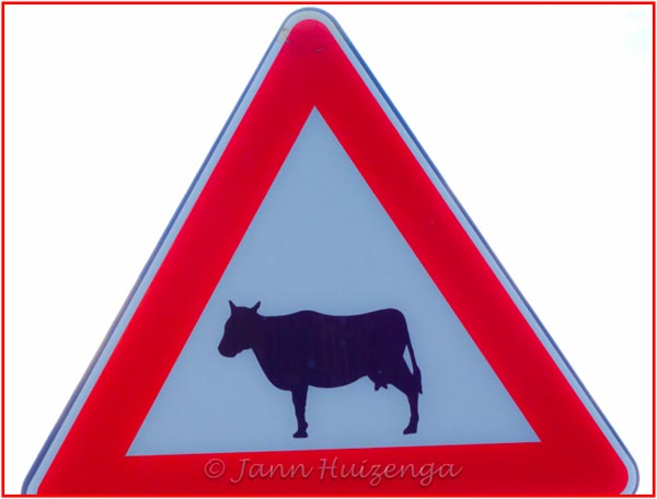 Cow SIgn in SIcily, copyright Jann Huizenga