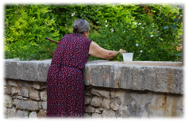 Collecting Jasmine in Sicily, copyright Jann Huizenga