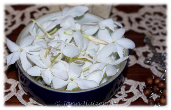 Bowl of Jasmine on Altar in Sicily, copyright Jann Huizenga