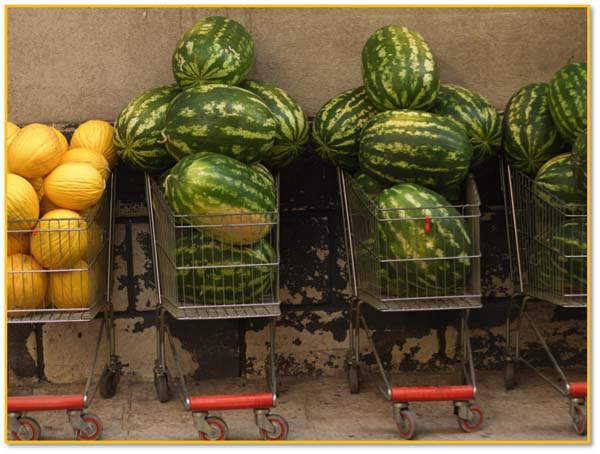 Melons in Sicily, copyright Jann Huizenga