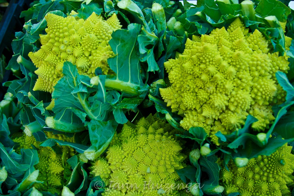 Broccolini in Sicily, copyright Jann Huizenga