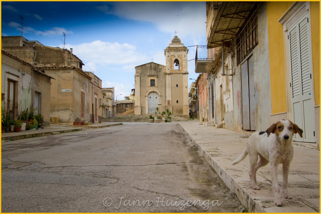 Dog in Acate, Sicily, copyright Jann Huizenga