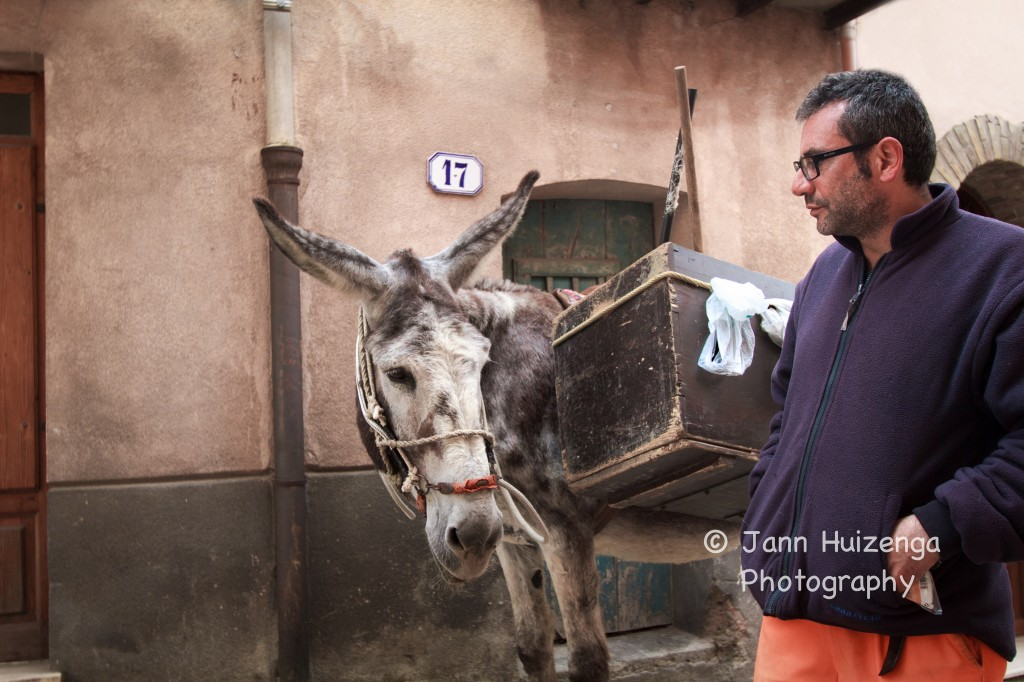 Garbage-Collecting Donkey in Sicily, copyright Jann Huizenga