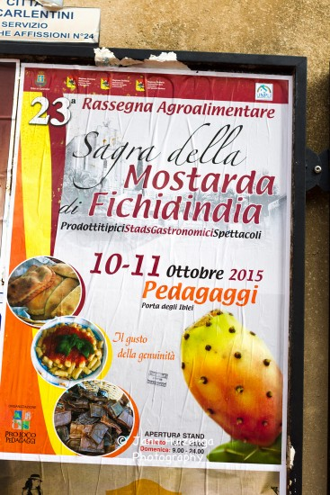 Prickly Pear Poster, Sicily, copyright Jann Huizenga